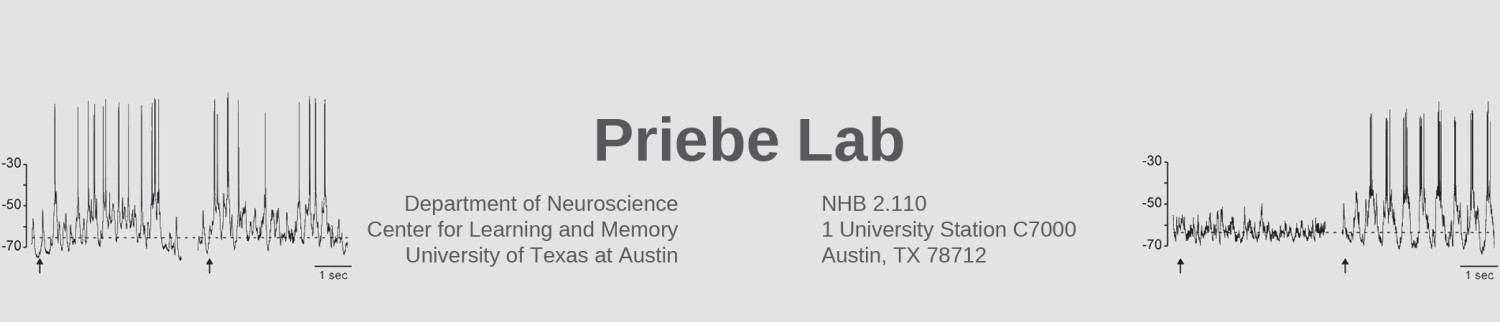 The Priebe Lab